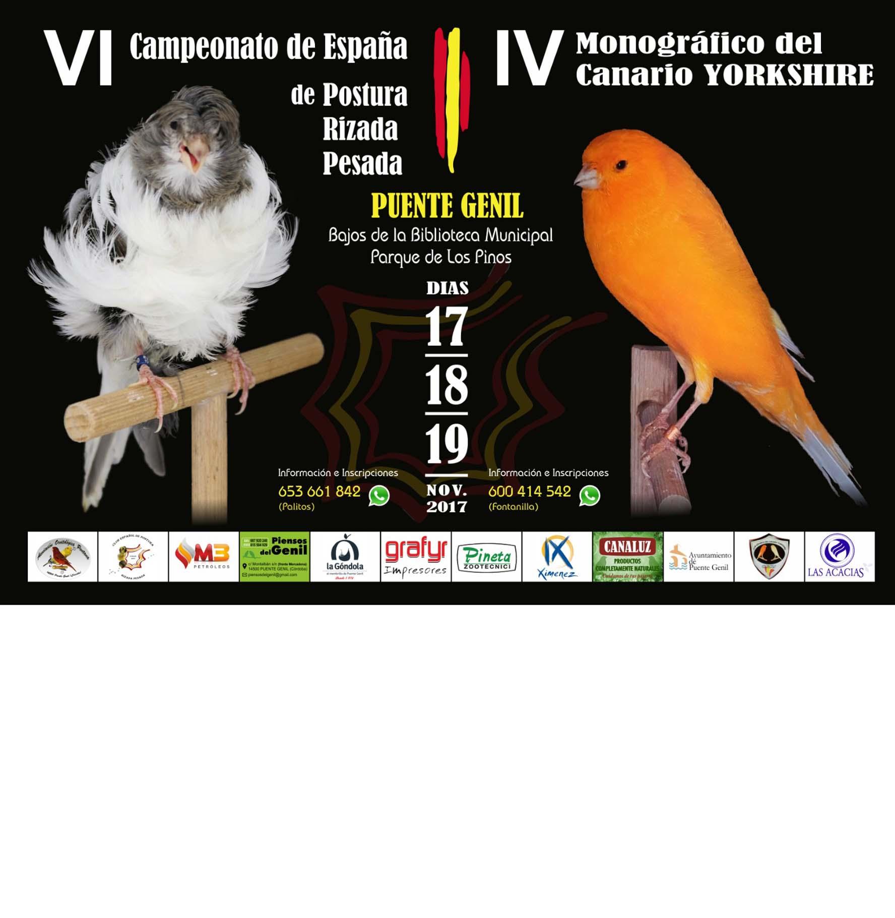 Campeonato y monográfico de canarios