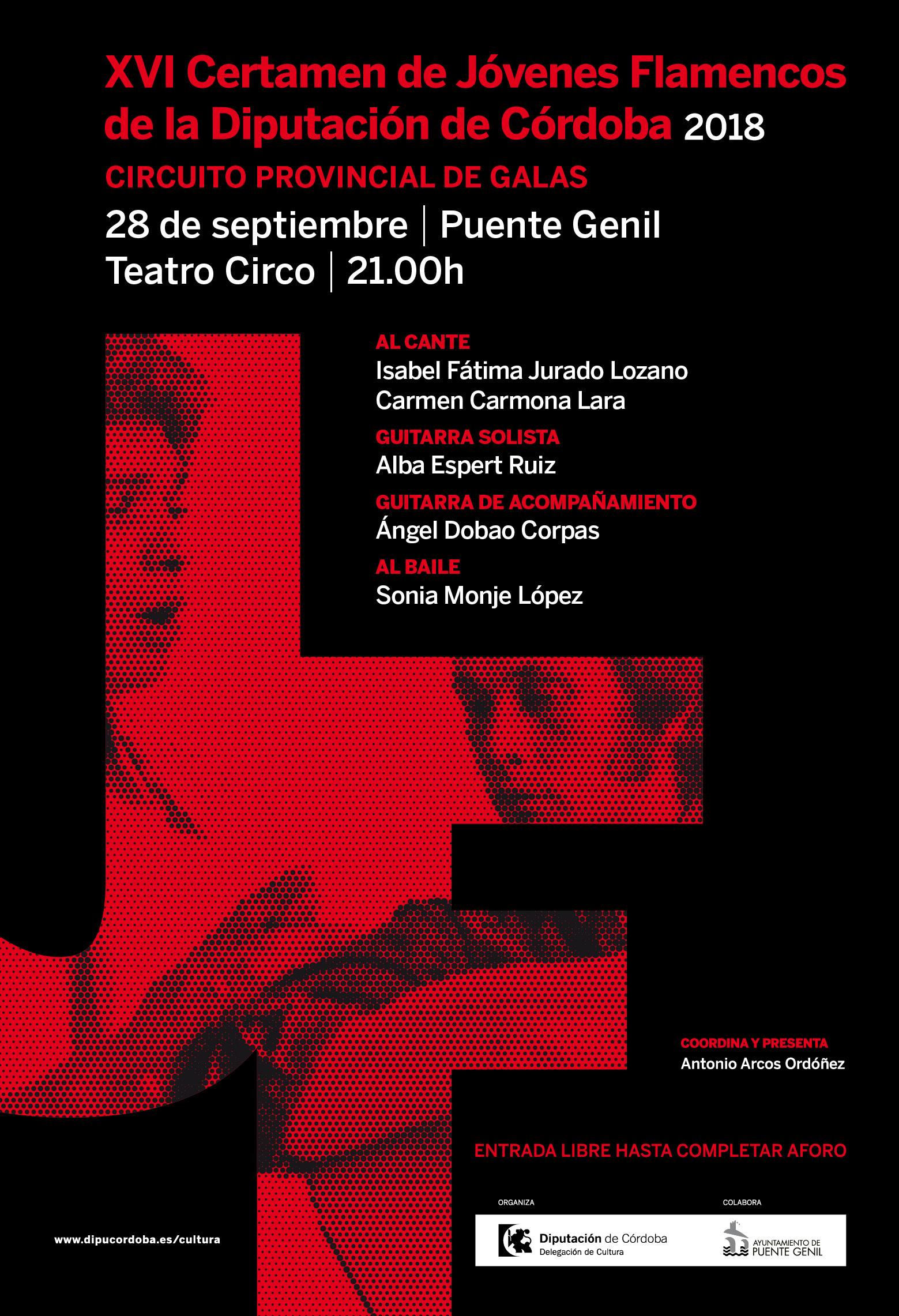 Gala del XVI Certamen de Jóvenes Flamencos