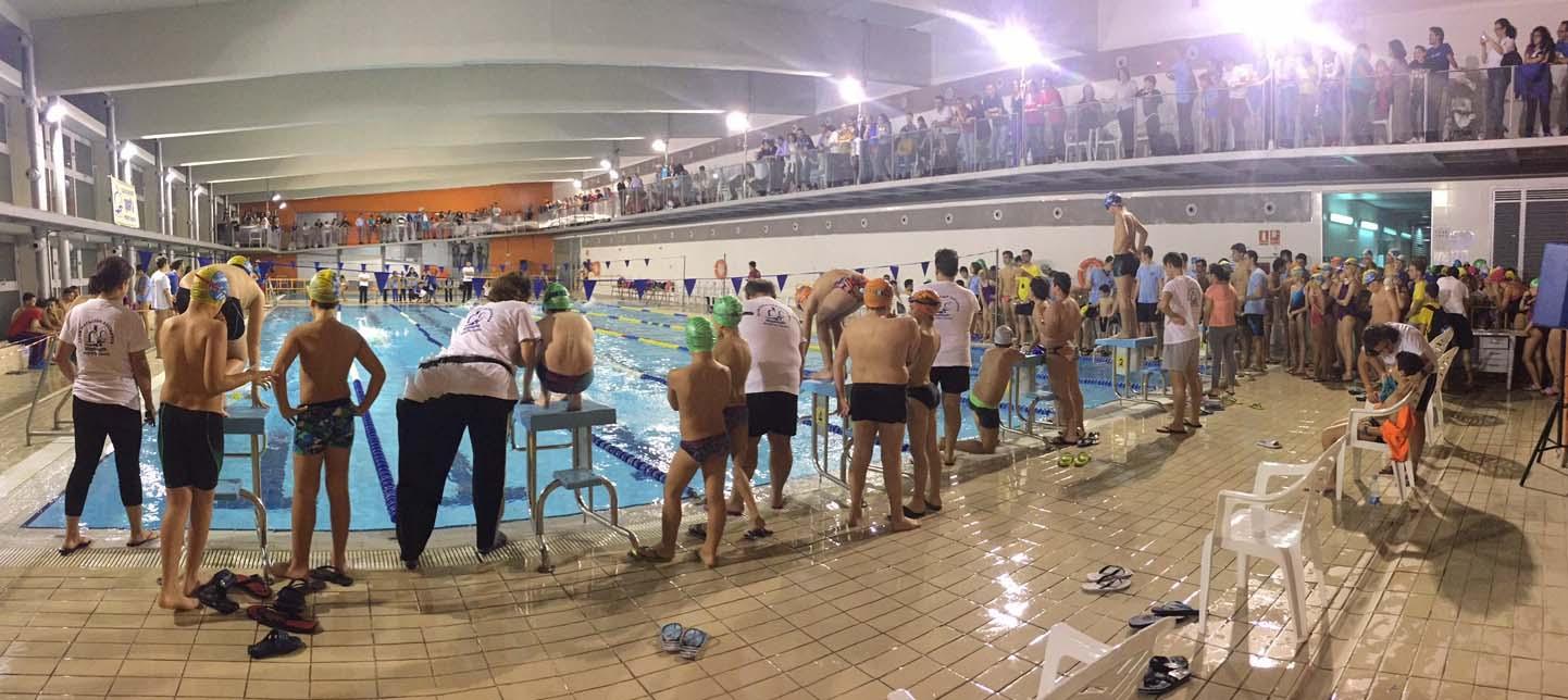 Campeonato de natación de Navidad