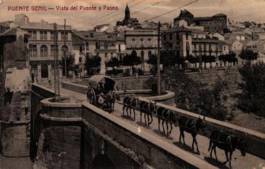 Vista del Puente y Paseo
